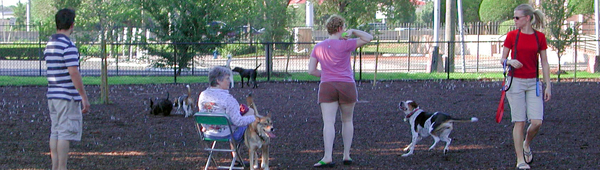 Houston Apartments With Dog Parks